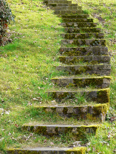 """""""Grüne Treppe - Green stairs"""" by dolorix @flickr.com"""