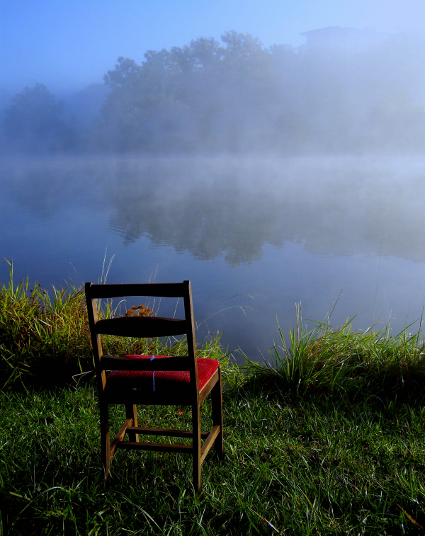 """""""A Foggy View"""" by Viqi French @ flickr.com"""