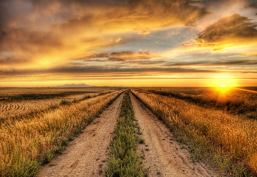 """""""The Road to Tomorrow"""" by Stuck In Customs @flickr.com"""